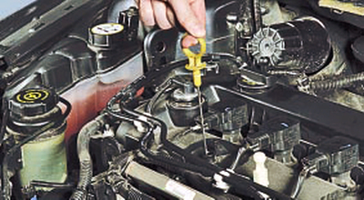 Проверка уровня и доливка масла в систему смазки Форд мондео 4 (2007-2014)